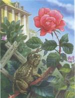 Сказка о жабе и розе